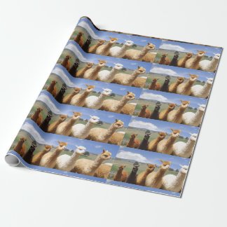 Alpaca Wrapping Paper