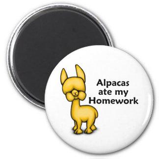 Alpacas ate my Homework Magnet