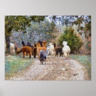 Alpacas Digital Painting Print