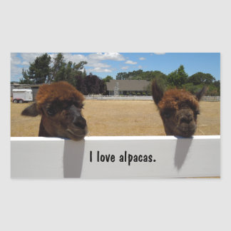 Alpacas in Templeton, California Rectangular Sticker