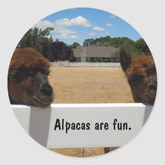 Alpacas in Templeton, California Classic Round Sticker