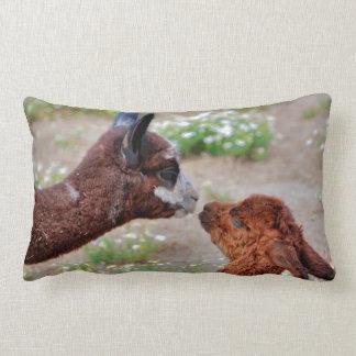 Alpacas Pillow
