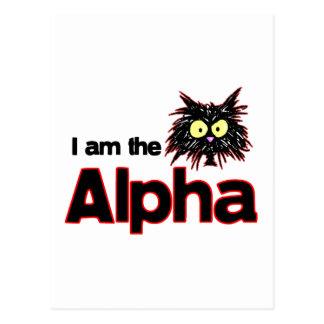 Alpha Cat Postcard