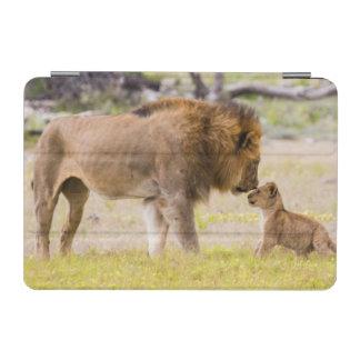 Alpha male lion inspects cub iPad mini cover