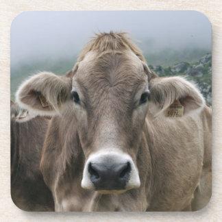 Alpine cows drink coaster