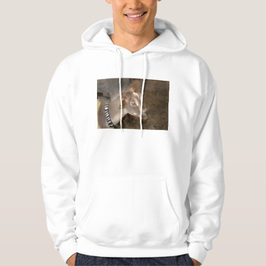 Alpine doe shaved baby goat striped face hoodie