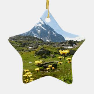 Alpine flowers - Beautiful! Christmas Ornament