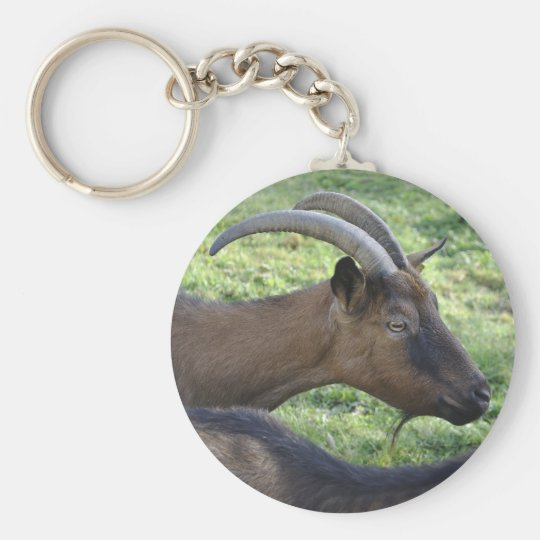Alpine goat basic round button key ring