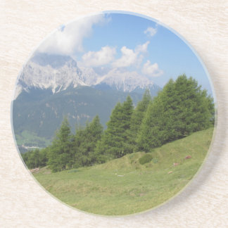 Alpine landscape coaster