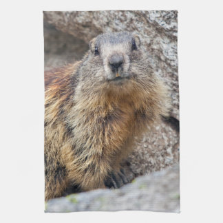 Alpine Marmot Kitchen Towel