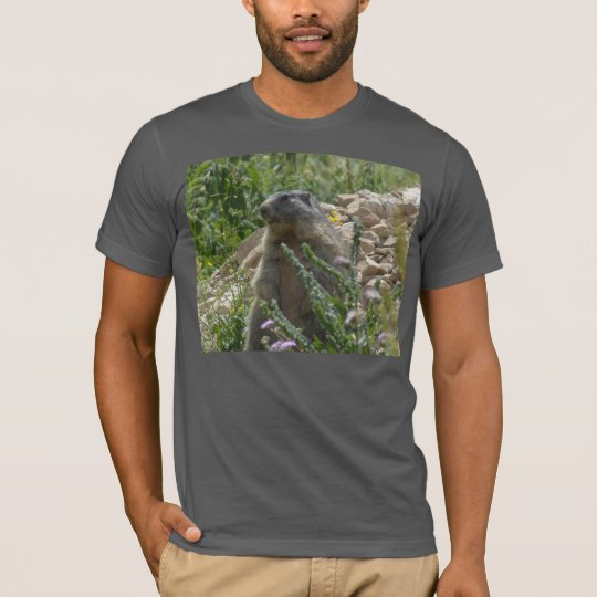 Alpine Marmot Sitting Down T-shirt