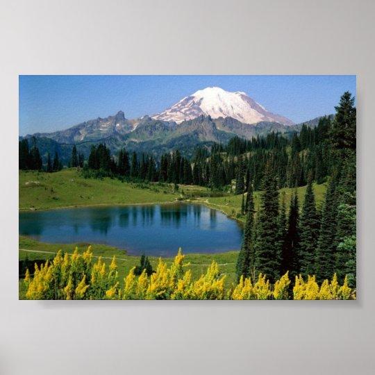 Alpine Scenic, Washington Poster