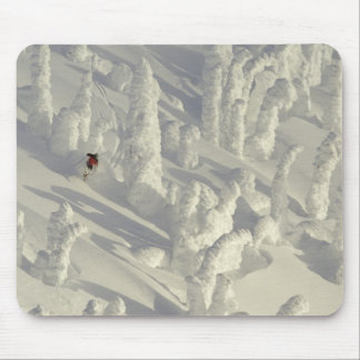 Alpine Skier in thick snowghosts at Big Mouse Pad
