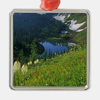 Alpine Wildflowers in the Jewel Basin in the Christmas Ornament