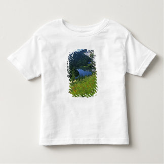 Alpine Wildflowers in the Jewel Basin in the Toddler T-Shirt