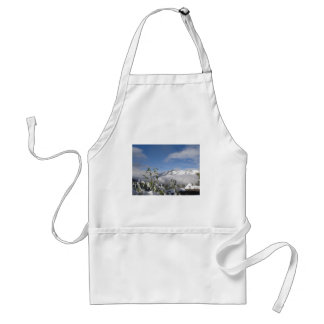alps in winter aprons