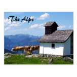 Alps Mountain Scene with Alpine Cows