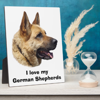 Alsatian German shepherd dog portrait Plaque