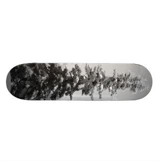 Alskan Skater 21.3 Cm Mini Skateboard Deck