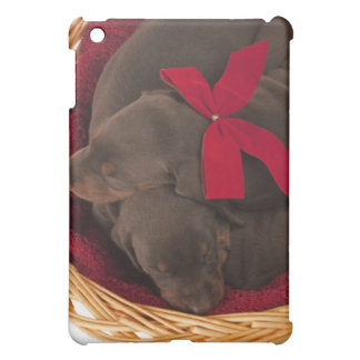 Also Doberman Pincher. Medium-sized domestic dog Case For The iPad Mini
