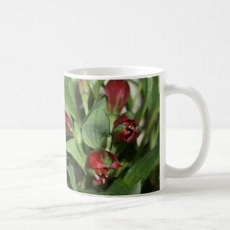 Alstroemeria Flower Buds Mug