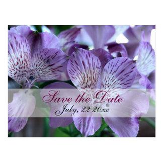 Alstroemeria Lily Wedding Save the Date Postcard