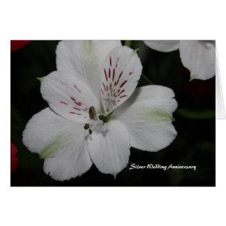 Alstroemeria Silver Wedding Anniversary Card