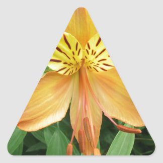 Alstroemeria Triangle Sticker