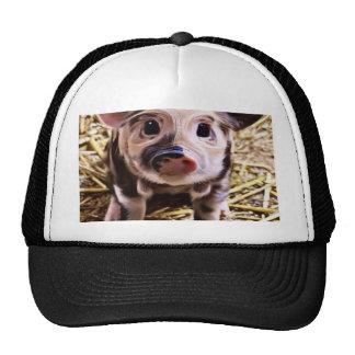 altered piglet crazy mesh hats