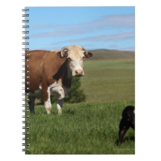 Although Cows and dogs are from different Spiral Notebook