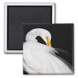 Always Egrets Square Magnet