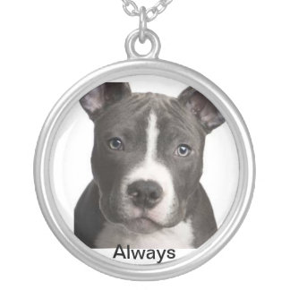 'Always' Pitbull lovers necklace