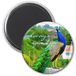 """Always sparkle"" blue green peacock photo magnet"