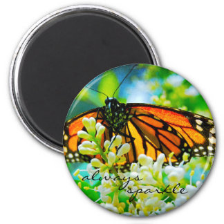 """Always sparkle"" monarch butterfly photo magnet"