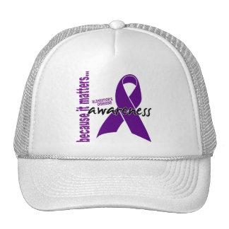 Alzheimers Disease Awareness Mesh Hat