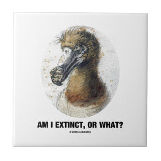 Am I Extinct, Or What? (Dodo Bird Portrait) Small Square Tile