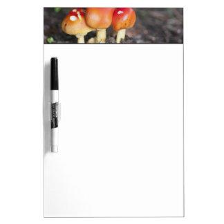Amanita family mushroom dry erase whiteboard
