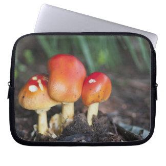 Amanita family mushroom laptop sleeve