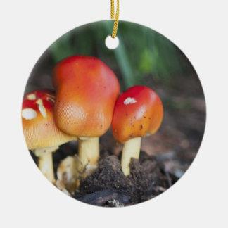 Amanita family mushroom round ceramic decoration