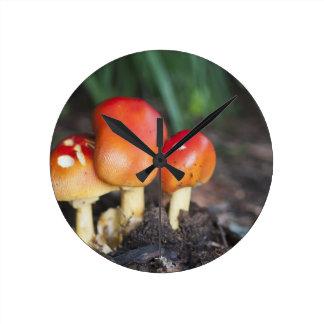 Amanita family mushroom round clock