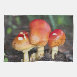 Amanita family mushroom tea towel