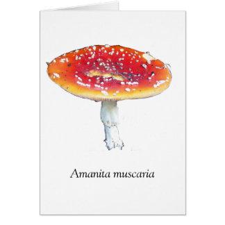 Amanita muscaria Greeting Card
