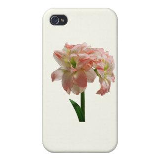 Amaryllis Aphrodite iPhone 4/4S Covers
