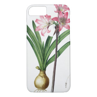 Amaryllis Belladonna, from 'Les Liliacees', engrav iPhone 8/7 Case