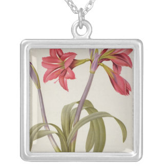 Amaryllis Brasiliensis Silver Plated Necklace