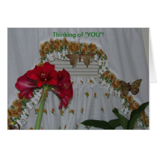 Amaryllis & Butterflies, Thinking of You Card