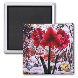 Amaryllis by Snow Window Square Magnet
