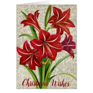 Amaryllis, Christmas Wishes. Card