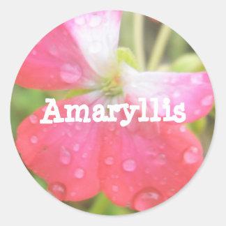 Amaryllis Classic Round Sticker