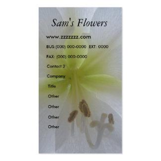 amaryllis Flowers business cards
